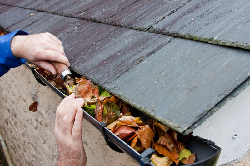 How to Clean Out Gutters and Drains - Mr. DIY Guy